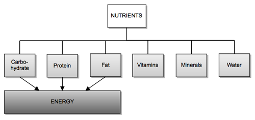 What-are-the-six-essential-nutrients