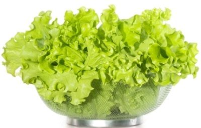 Health-benefits-of-Lettuce