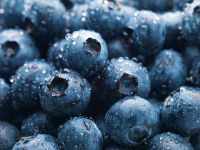 Health-benefits-of-blueberries